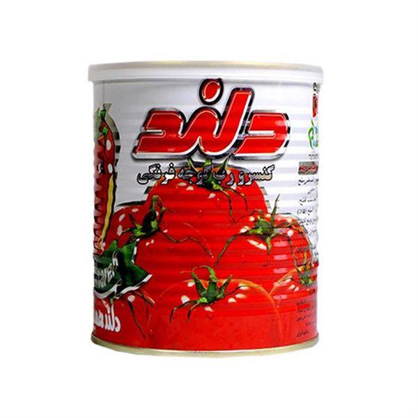 رب گوجه فرنگی 800 گرمی کلیدار دلند