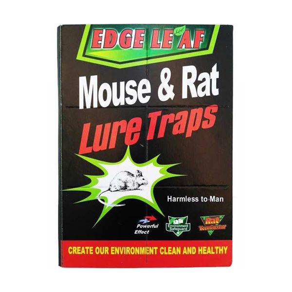 چسب موش کتابی بزرگ